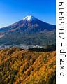紅葉の三ッ峠と霊峰 富士山 山梨 71658919