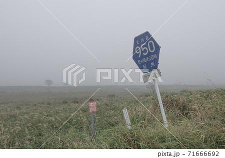 北海道野付郡別海町の野付半島(ナラワラ,トドワラ)のさみしい標識 71666692
