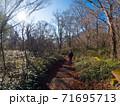 石鎚山に続く森を歩く女性(愛媛県西条市) 71695713
