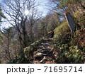 石鎚山登山道を歩く女性(愛媛県西条市) 71695714