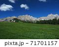 ドロミテ チャンペディエ高原からカティナッチョ山群を望む 71701157