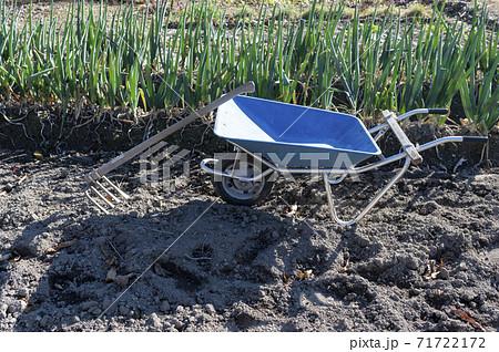 畑の中にある手押し一輪車(ねこ)と鍬 71722172