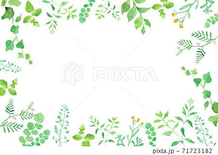 グリーンの草花の囲みフレーム 水彩イラストのトレースベクター 71723182