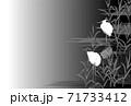 白鷺 サギ 墨絵 モノクロ 71733412