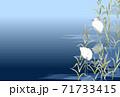 白鷺 サギ 青 水色 紺 71733415