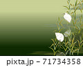 白鷺 サギ 緑 利休 71734358