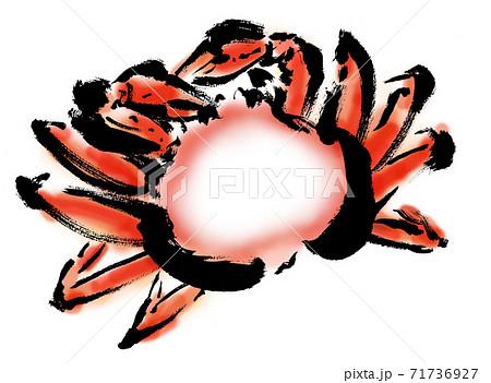 コピースペースのあるズワイガニの手描きイラスト 71736927