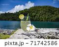 海とロックアイランドを背景にしたカラマンシー・レモン・ジュースとプルメリアの、南の島 パラオ共和国 71742586