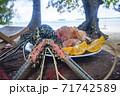 南の島パラオ共和国の海の幸、ゴシキエビの刺身レモン添え 71742589