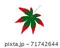一枚色づき始めの紅葉の葉 紅葉の色づき情報 71742644