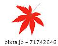一枚真っ赤な紅葉の葉 紅葉見ごろイメージ 紅葉の色づき情報 71742646
