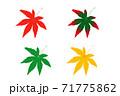 モミジの葉 見頃情報 PNG 真っ赤 色づき始め 青葉 黄色  71775862