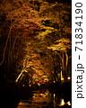 小國神社の紅葉風景 71834190