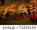 小國神社の紅葉風景 71834194