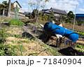 秋の農作業 71840904