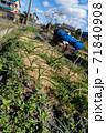 農薬を使わない畑 71840908