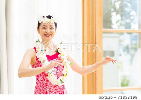 フラダンスをする女性 71853198