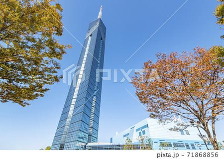 福岡県福岡市 福岡タワー 71868856