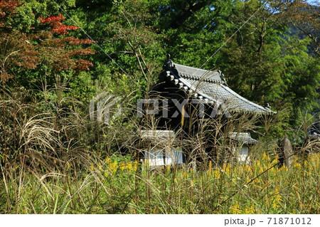 秋の古寺 71871012