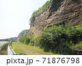 伊豆大島地層 71876798