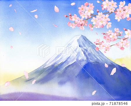 春の花:さくらと富士山の景色 水彩イラスト 71878546