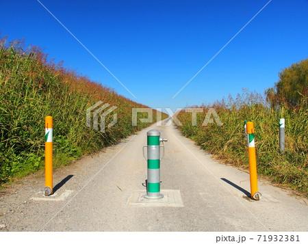 車止めのある秋の江戸川土手の坂道風景 71932381