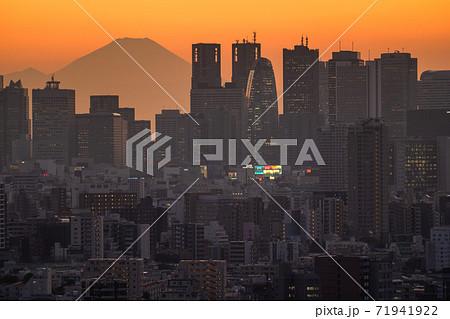 《東京都》富士山と東京の摩天楼・都市風景 71941922