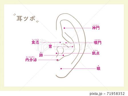 Ear points for beauty_1 71958352