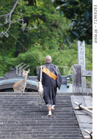 奈良東大寺二月堂の階段で僧侶と鹿 71969263