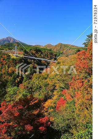 【大分県】晴天下の九重夢大吊橋と紅葉 71976334