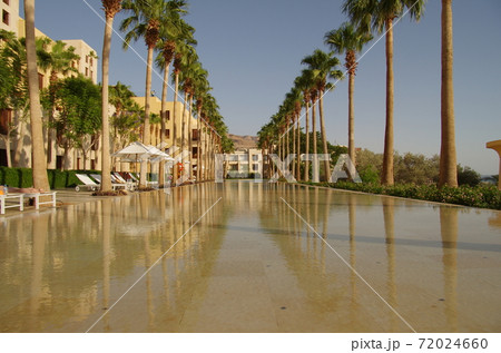 【ヨルダン】死海、リゾートホテルの縦長プールとその脇に立ち並ぶヤシの木 72024660