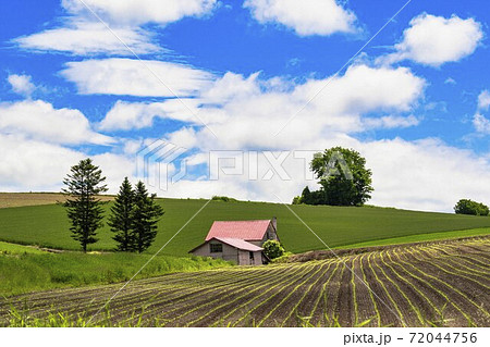 初夏の青空と赤い屋根の家 北海道美瑛町 72044756