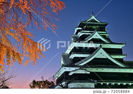 熊本市 復旧進む熊本城 ライトアップ 72058984