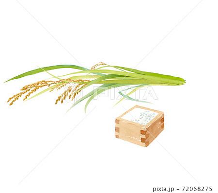 収穫した稲穂の束と一升枡の水彩イラスト(トレースベクター) 72068275