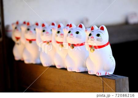 【街】観光客を並んで迎える豪徳寺の招き猫 72086216