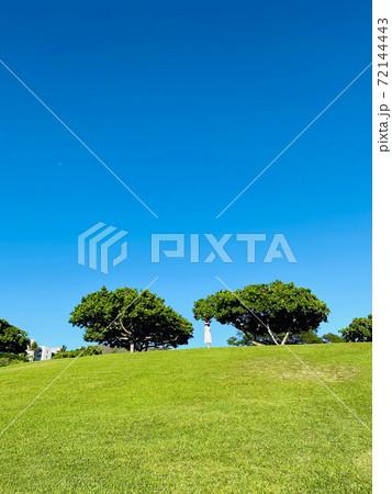 ハワイのクリスマス2020 ダウンタウンの丘 72144443