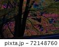紅葉 72148760