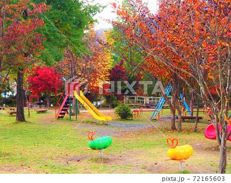 子供の遊ぶ滑り台やブランコのある公園 72165603