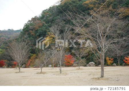 岩国市 道の駅「ピュアラインにしき」宇佐川沿い 72185791