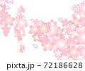 桜をモチーフにした入学•卒業イメージカット 72186628