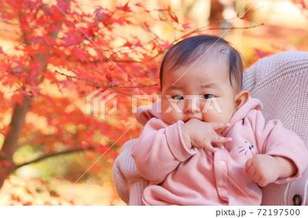 秋の紅葉と母親に抱っこされる赤ちゃん 72197500