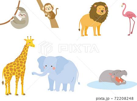 ジャングル 動物セット 72208248