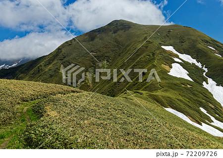 上越国境稜線縦走路から見る初夏の谷川連峰・オジカ沢の頭 72209726