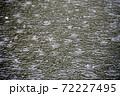 【雨の日のイメージ】水たまりに降る雨が作る波紋 72227495