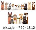 犬 一列 グループ 正面 セット 72241312