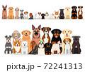 犬 一列 グループ 正面 セット 72241313