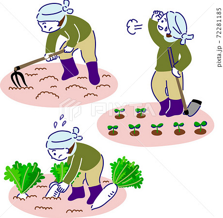 畑で農作業をする人 耕す、植える、収穫する 72281185