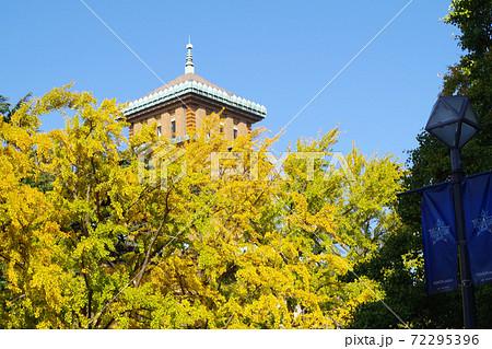 黄葉した銀杏と神奈川県庁キングの塔の景色 72295396