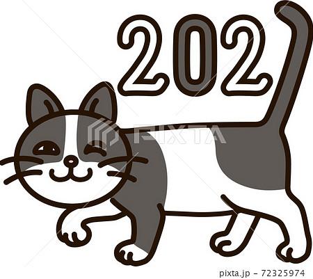 72325974