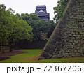 2014年の熊本城(平櫓付近から見た天守) 72367206